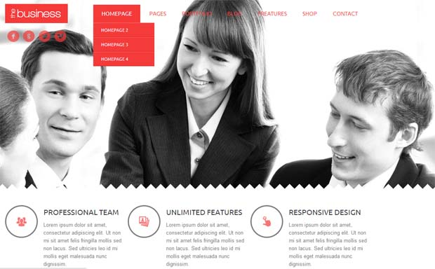 TheBusiness - Responsive HTML5 WordPress Theme