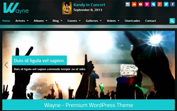 Wayne - Responsive SEO Friendly WordPress Theme
