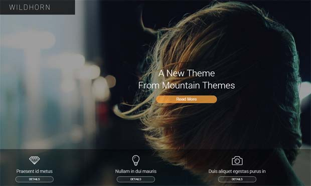 Wildhorn - Responsive Full Screen WordPress Theme