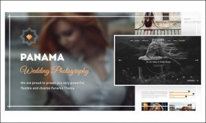 Panama - Photo Album or Gallery WordPress Themes