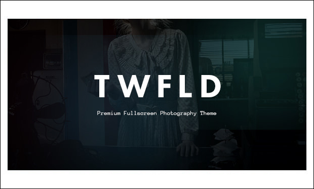 TwoFold - Photo Album or Gallery WordPress Themes