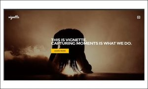 Vignette - Photo Album or Gallery WordPress Themes
