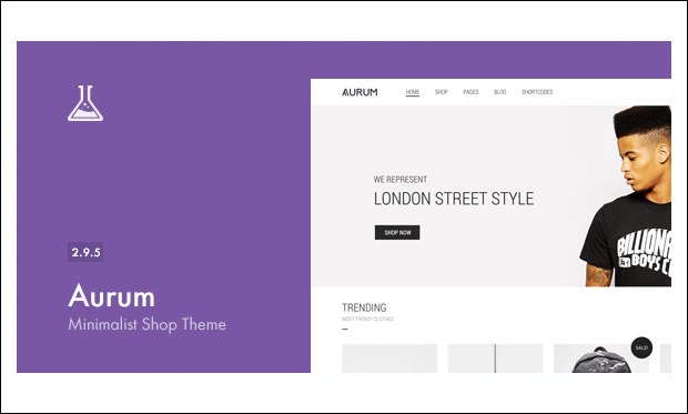 Aurum - Responsive WordPress Themes