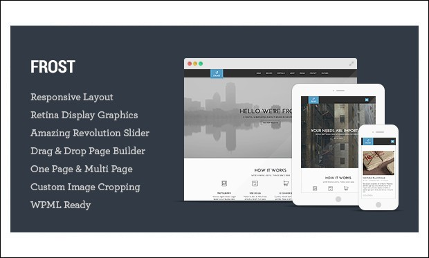 Frost - Single Page WordPress Themes