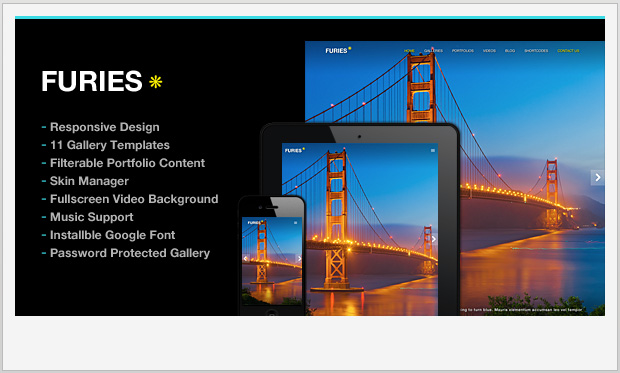 Furies -Responsive WordPress Theme for Photographers