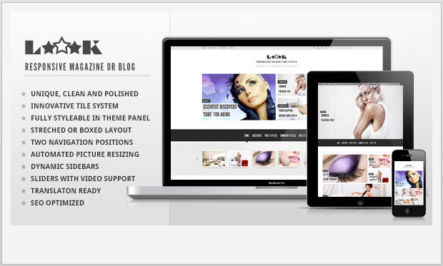 Loook -Best Responsive WordPress Theme for Bloggers