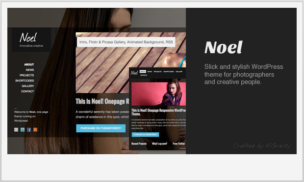 Noel -Single Page WordPress Theme