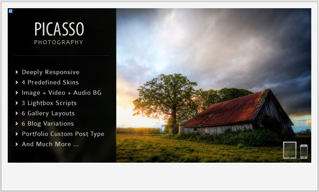 Picasso -Responsive WordPress Theme for Photographers