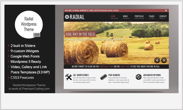 Radial -Best Responsive WordPress Theme for Bloggers