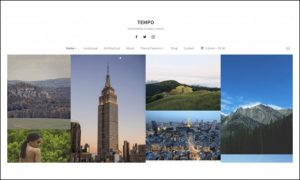Tempo - Photographer WordPress Themes