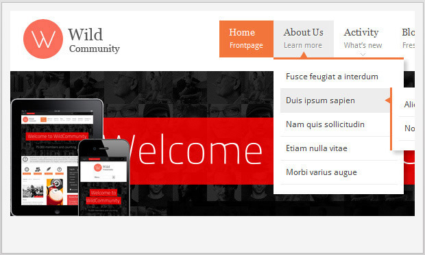 WildCommunity -Responsive Buddypress WordPress Theme