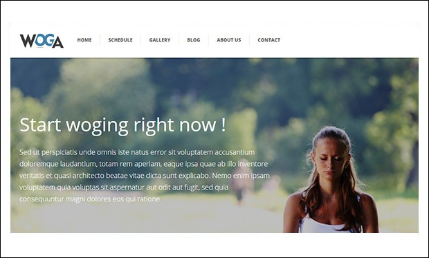 Woga - Responsive WordPress Themes