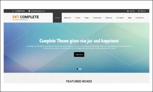 Complete Pro - Metro Styled WordPress Themes