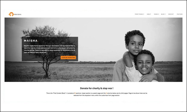 WordPress Themes for Non-Profit Organizations