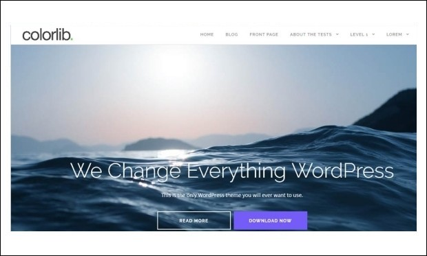 Shapely - Magazine WordPress Themes