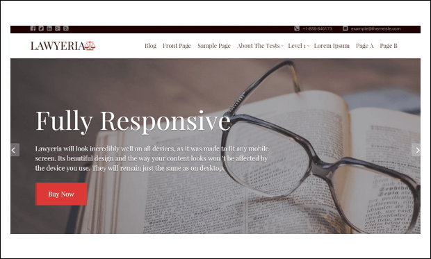Lawyeriax - WordPress Themes for Lawyers and Attorneys