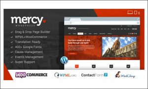 Mercy - WordPress Themes for Politicians and Political Parties