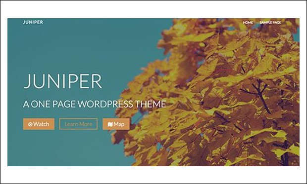 Juniper - Startup WordPress Themes