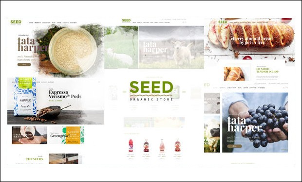 Seed - WordPress Theme Frameworks